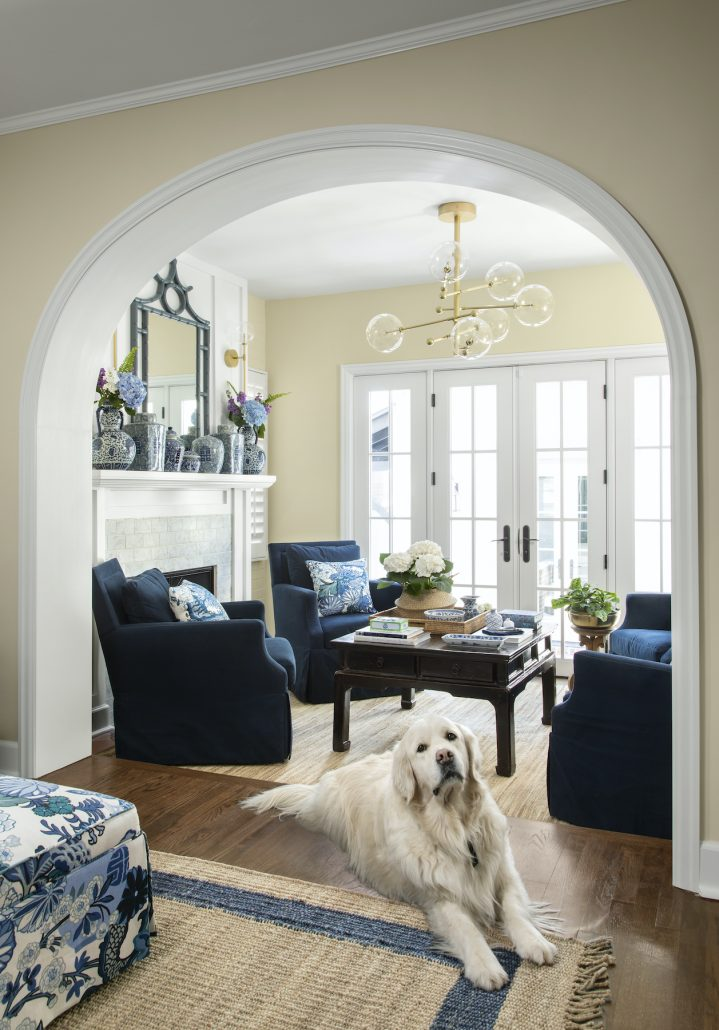 Big white dog siting in a remodeled living room