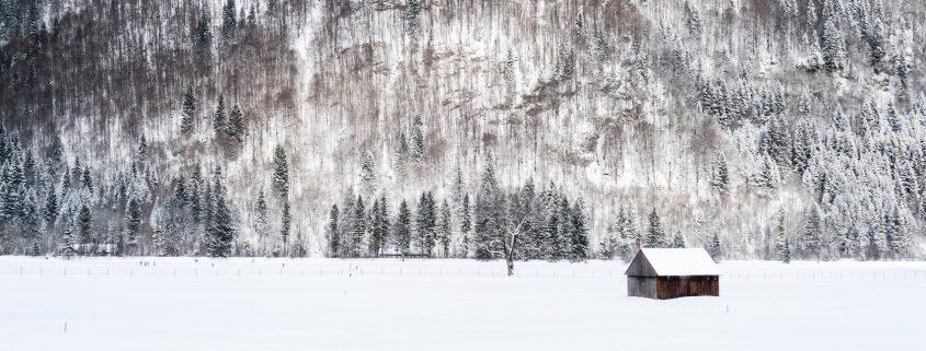 Snowy Cabin | Winterizing Your Colorado Home | Factor Design Build | Denver, CO